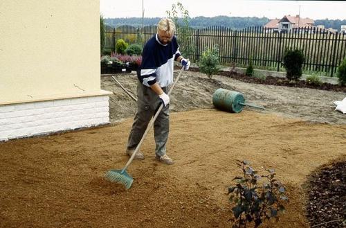 Jak założyć ogród po budowie