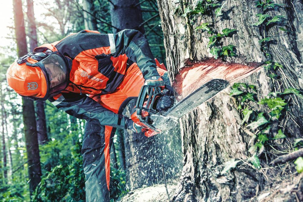 Zagospodarowanie drewna.jpeg