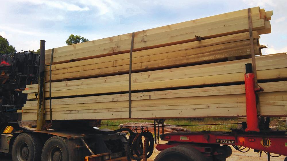 Usuwanie owadów z drewna.jpeg