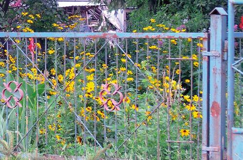 Naprawiamy ogrodzenie