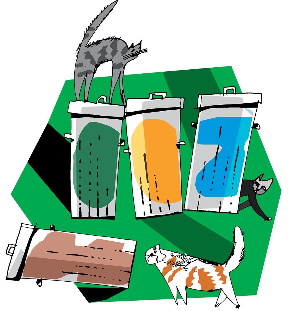 Jak będziemy segregować śmieci