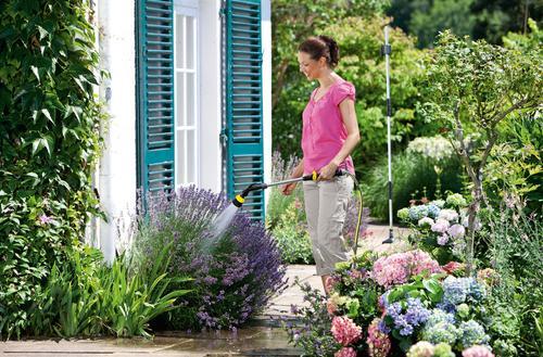 Zachować zieleń roślin na dłużej