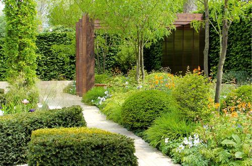 Zdrowy ogród