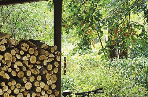 Drewno na zapas