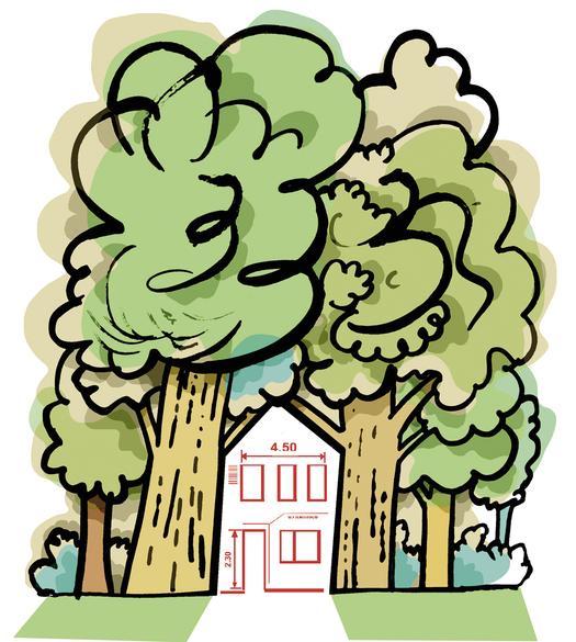 Wycinanie drzew i krzewów na posesji prywatnej